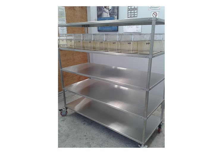 Estante o rack desarmable jumbo